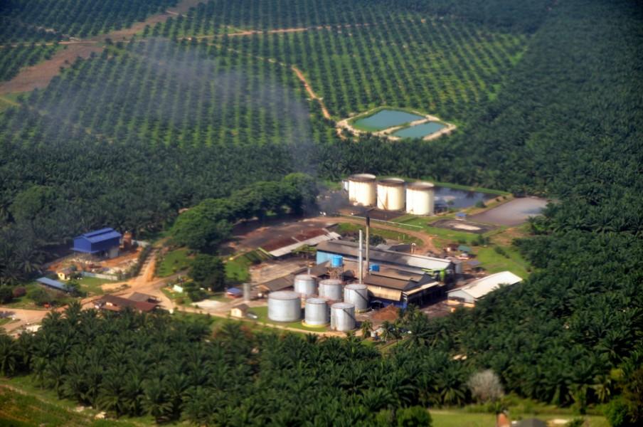 Palm oil plant at Sepang, Malaysia. /PHOTO FLICKR/MARUFISH